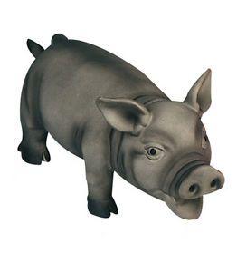 Hundespielzeug Schwein Latex